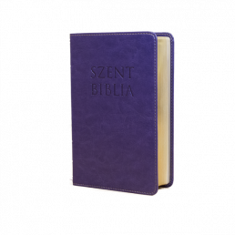 Mini Biblia - Lila